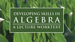 Developing Skills in Algebra